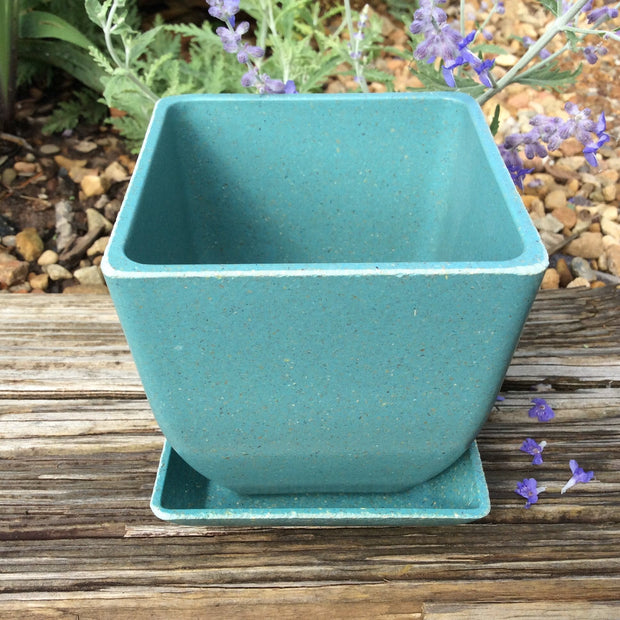 Accessories - Ecoforms - Pot - Small Square - Sow True Seed