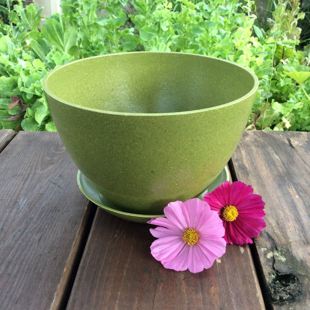 "Accessories - Ecoforms - Saucer - Circle [5.5""] - Sow True Seed"