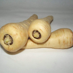 "Parsnip seeds- Hollow Crown: Large heirloom root reaches 12"" long, frost exposure adds to sweetness in the fall. Good winter keeper."
