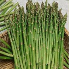 Asparagus - Mary Washington - Sow True Seed