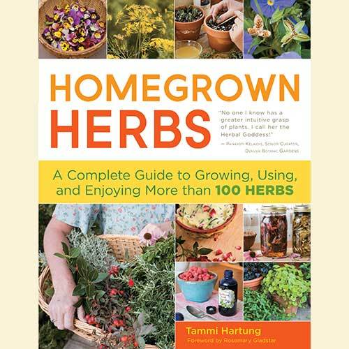 Books - Homegrown Herbs - Sow True Seed