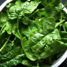 Spinach seeds - Bloomsdale Long Standing : Heirloom slow-bolting frost tolerant variety.