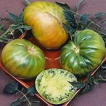 Organic Tomato seeds - Aunt Ruby's German Green : Legendary colorful heirloom.