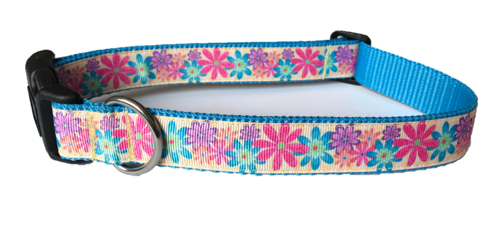 Dog Collar - Darling Daisies