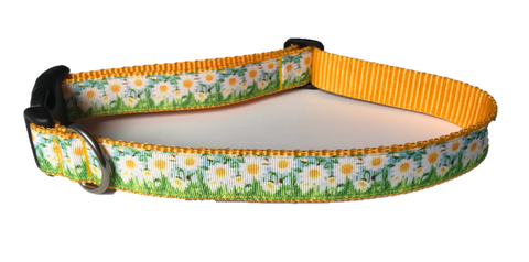 Dog Collar - Field of Daisies