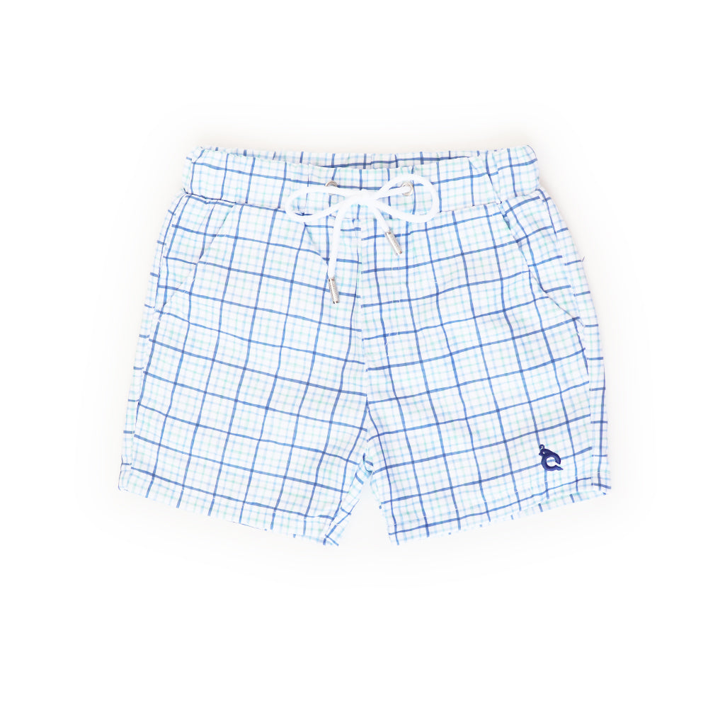 Watercolor Tattersall Swim Trunk