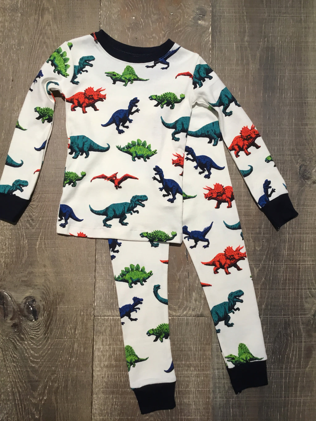 Dino Herd Organic Cotton PJ Set