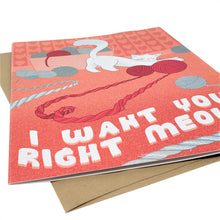 I Want You Right Meow - Dirty Card - Naughty Adult Greeting Card - Sleazy Greetings