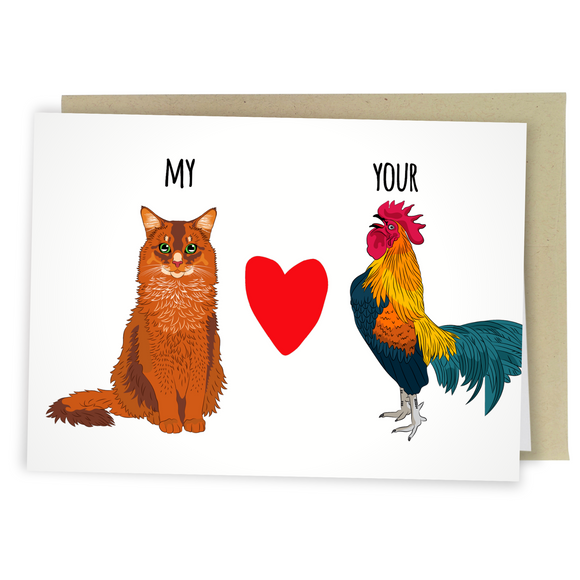 My Cat Loves Your Rooster