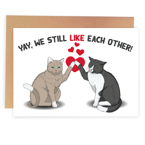 Yay! We Still Like Each Other - Dirty Card - Naughty Adult Greeting Card - Sleazy Greetings