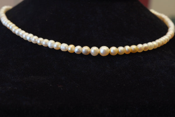 Luxury single-layer pearl necklace  عقد لؤلؤ طبيعي