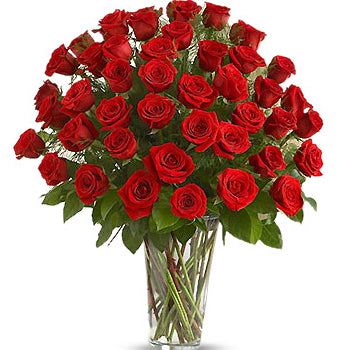 75 Red Rose Arrangement - D'Decorations Flower Shop | Floreria