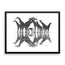 GIRAFFE REFLECTIONS Framed poster - COOOL CATS