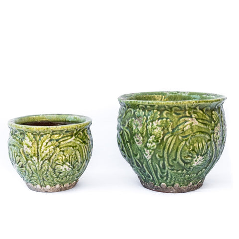 Tropic Round Green Pot