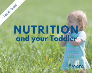 Nutrition for your Toddler-Amara Organic Foods