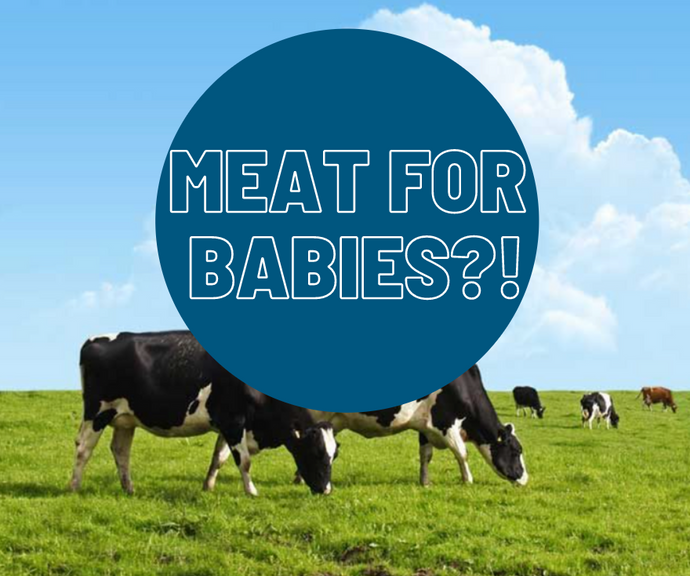 Meat, In Baby Food?! The What, How, When and Why to feed meat to your baby