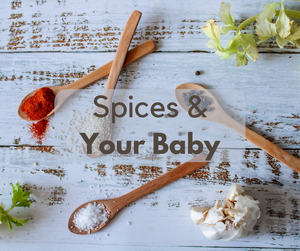 6 Spices that Benefit your Baby-Amara Organic Foods