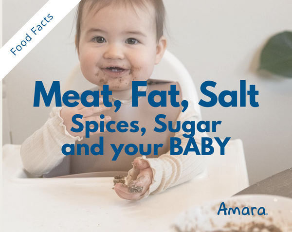 how to introduce meat, fat and salt to your infant