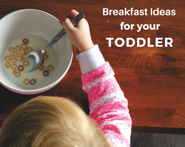 breakfast ideas for your toddler