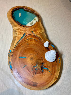 Timber resin disc with blue water and polar bear and fur seal dancing  great for open ended play Reggio Emilia and small world play teachers timber toys preschool  play