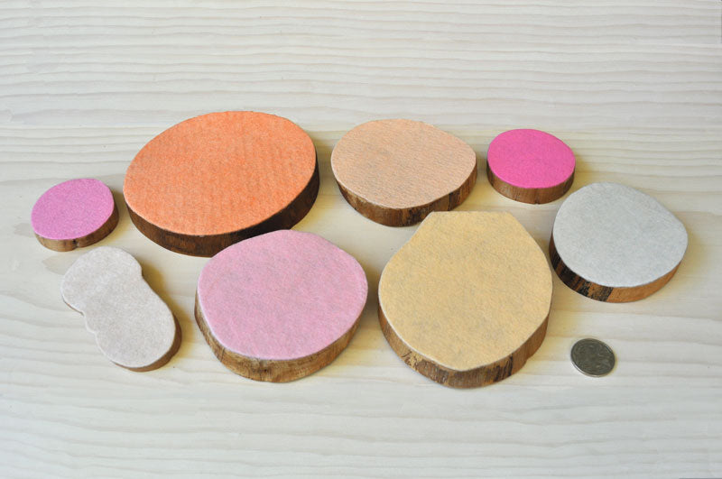 Timber wood discs felt natural tree resources sustainable  seashell