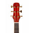 Maestro Private Collection Raffles Adirondack Spruce top w/Cocobolo Acoustic Guitar