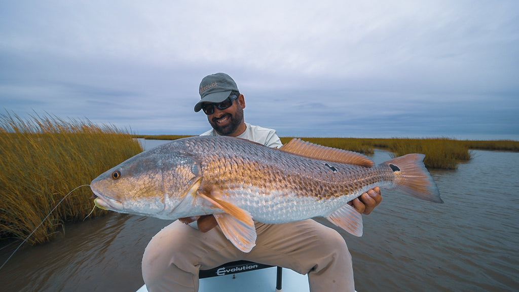 Louisiana Redfish Fly Fishing Film!
