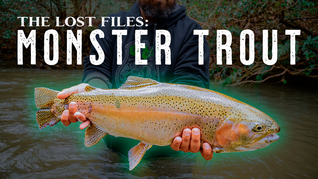 NEW SERIES! The Lost Files: Monster Trout on the Soque River