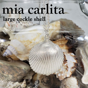 Large cockle shell