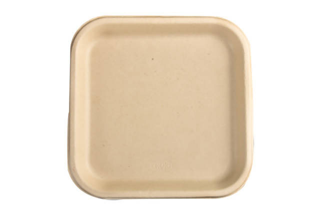 100% Home Compostable Sugarcane Bagasse 9