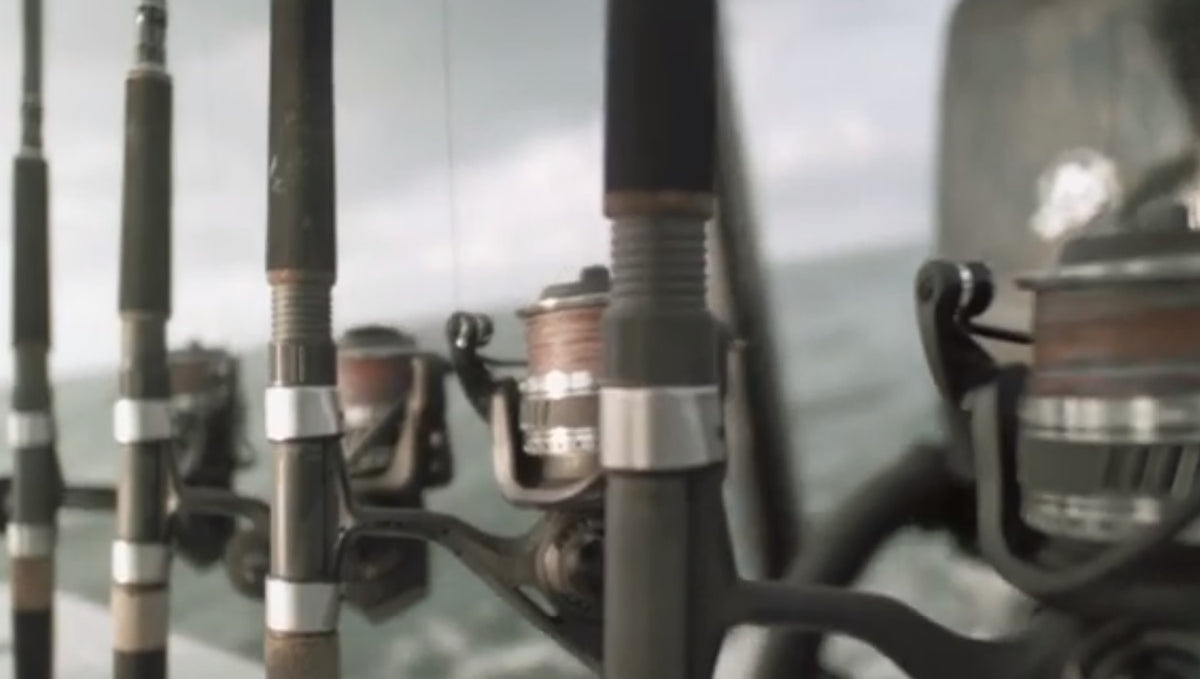 Next Generation Cedros Spinning Reels