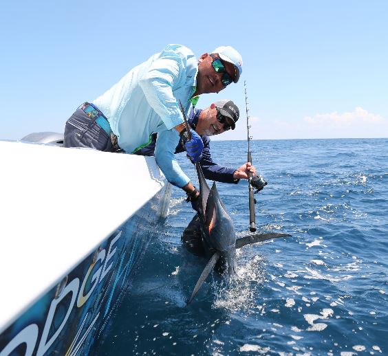 Okuma How To- Rigging for Tuna and Sailfish