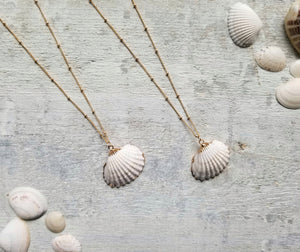two gold filled natural clam shell necklaces