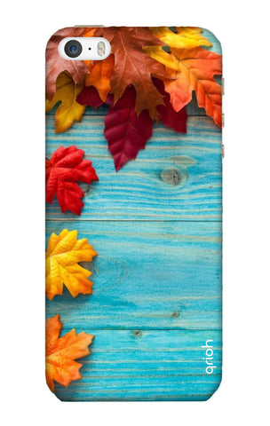 Fall Into Autumn iPhone 5C Cases & Covers Online