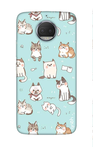 Cat Kingdom Motorola Moto G5S Plus Cases & Covers Online