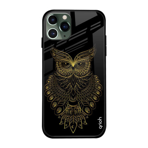Golden Owl iPhone 11 Pro Glass Cases & Covers Online