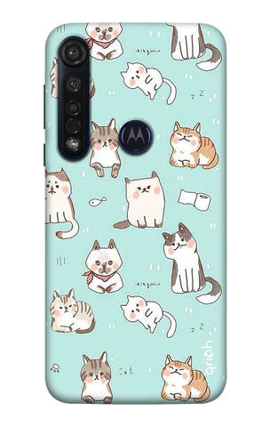 Cat Kingdom Motorola Moto G8 Plus Cases & Covers Online