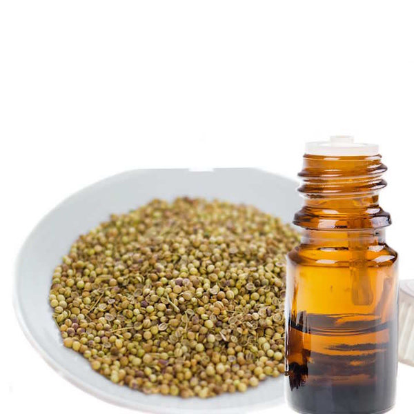 A bowl of Coriander seeds next to a bottle of essential oil