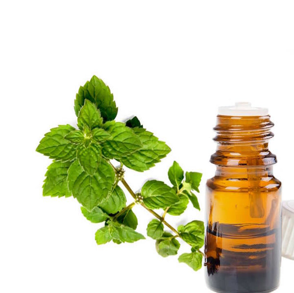 Leaves of peppermint next to a bottle of essential oil