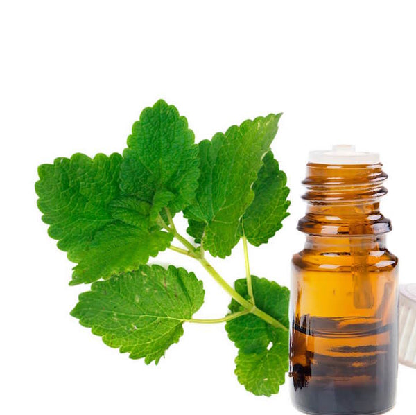 Spearmint leaves next to a bottle of essential oil
