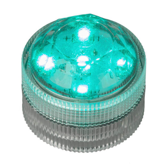 Teal Five LED Submersible - Pack of 10 - IntelliWick