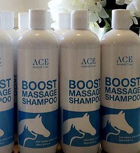 BOOST MASSAGE SHAMPOO 500ml TWINS