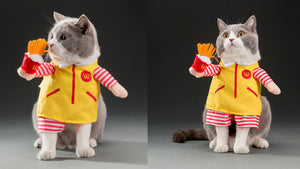 Cat costume, cat outfits, cat cosplay, grumpy cat, cat jacket, cate clothing, macdonalds, dress-up
