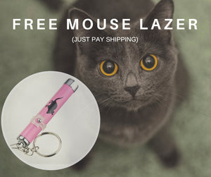 Kitty Mouse Laser - Winter Toy! FREE + Shipping (Special)
