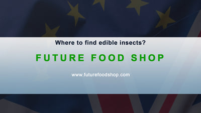 Where to find edible insects in UK / Europe
