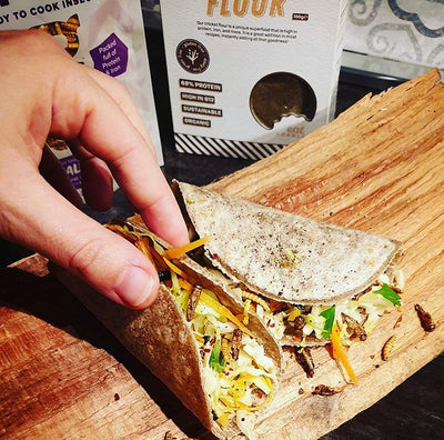 Cricket flour tacos with mealworm coleslaw