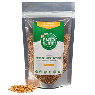 ENTO PURE BUFFALO'S WHOLE - bag 50gr