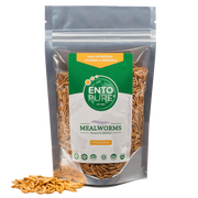 ENTO PURE MEALWORMS WHOLE - bag 50gr