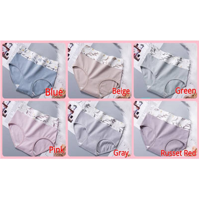 Dorothy Japanese Premium Cotton Panties (1 set 6 pcs)