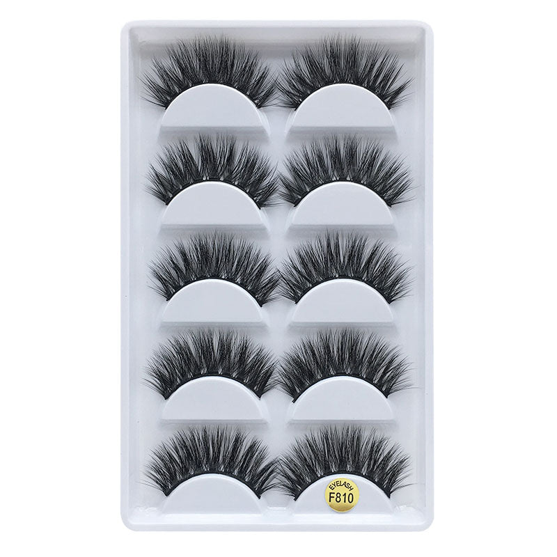 3D Mink Eyelashes Natural 5 Pairs F810